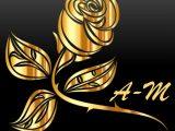 logo A-m